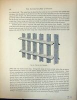 Original Old Antique Print Birds Fulton Wright C1880 Pigeon Perches Carriers