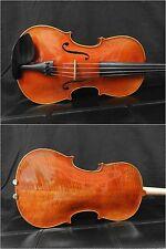 Advanced Viola, 16' Size, Good Set Up W/France Bridge & Dominant Strings, New!