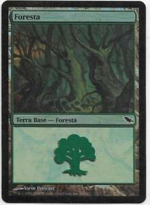 MAGIC THE GATHERING FORESTA FOIL SHADOWMOOR THE REAL_DEAL SHOP