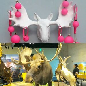 Resin Animal Head Moose Deer Antler Wall Mount Ornament Decor wall trophy 34cm