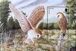 2001 MNH JERSEY OWL STAMPS SOUVENIR SHEET BARN OWL BIRD STAMPS BIRDS