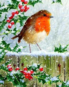 Winter Snow ROBIN RED BREAST Garden Bird Old World Flycatcher Family Art Print