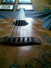 """Blueberry Special Order Acoustic 5 STRING Bass Guitar """"Fierro""""  90 Day Delivery"""