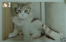 Custom Pet Portrait Oil Painting Commission Cat Dog Art from Photo Canvas 16x20