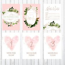 Baby Milestone Cards, 4x6 Photo Prop, 33 Cards, Rose Gold Greenery, Hearts