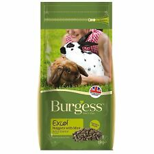 Burgess Excel Tasty Nuggets with Mint Adult Rabbit Food 12kg - postage included
