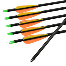 """12X 26"""" Archery Arrows Compound Bow Youth Targe Practice Outdoor Shooting Arrows"""