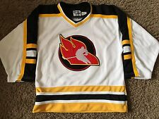THE FLAMES  # 20   SEWN HOCKEY  JERSEY  BY AARON SPORTSWEAR  YOUTH   X LARGE