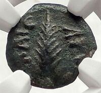 Biblical Jerusalem Saint Paul NERO Time PORCIUS FESTUS Ancient Roman Coin i70636