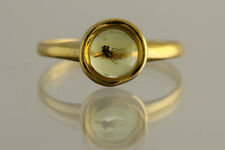 Fossil Insect Genuine BALTIC AMBER Gold Plated Silver Ring 1.2g 180605-7