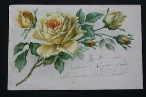 Postcard Antique 1904 Flowers