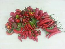 165 Chilli Samen 11 Sorten x 15 Samen -einzeln Verpackt. tolles Highlight-Packet