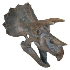 More details for resin replica freestanding triceratops skull 23cm