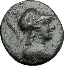 APAMEIA PHRYGIA 88BC Athena Gemini Caps Eagle Original Ancient Greek Coin i61135