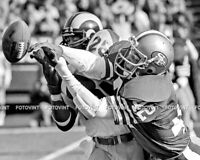 RONNIE LOTT Photo Picture SAN FRANCISCO 49ers Football Print 8x10 or 11x14 (RL6)