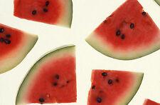 1 OZ Organic Crimson Sweet Watermelon Seeds ~ 560ct WHOLESALE ~ Fun Sweet Fruit!