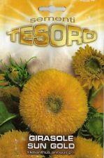 semi seeds girasole sun gold sungold fiori