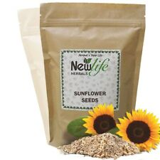Premium Quality Sunflower Seeds Nuts Seeds Super Food Healthy Nuts Protein Spoon