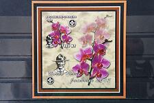 Orchideen 15 orchid Blumen flowers Natur Flora Pflanzen plants Mocambique 2002