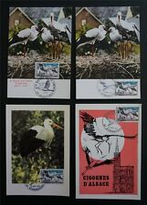 FRANCE MK 1973 STÖRCHE STORCH BIRDS STORK 4 MAXIMUMKARTEN MAXIMUM CARD MC c7170