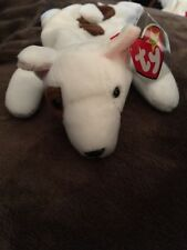 TY Beanie Baby Butch- Tag errors- Retired!