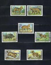 WOLF  OF MONGOLIA.-       >{7}    1970