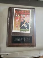 1991 Upper Deck San Francisco 49ers Jerry Rice Flash 80 Custom Mounted