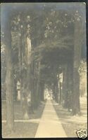 ASHTABULA Ohio Real Photo Postcard Trees Street