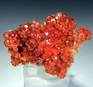 """2"""" Superb Cherry Red Vanadinite Crystals on Matrix,  Morocco! V163"""