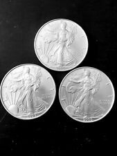 Silver eagle lot of 3 from low-mintage year 2005