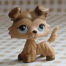 """LPS #893  LPS pale Chocolate Collie Dog pubby FIGURE 2"""" Littlest pet shop"""