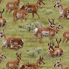 Sagebrush Antelope North American Wildlife By the yard fabric Elizabeths Studio