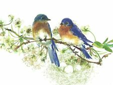 Bluebirds Boxed Note Cards-- Set of 8 with Spring Green Envelopes