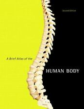 A Brief Atlas of the Human Body by