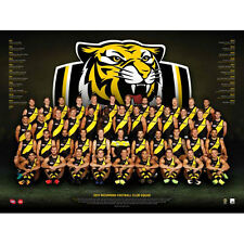 AFL 2017 Team Richmond Tigers POSTER 60x80cm NEW Aussie Football League Players
