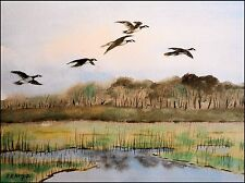 CANADIAN GEESE IN AUTUMN giclee print by Richard R. Nervig
