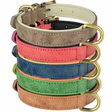 Soft Padded Leather Dog Collar Adjustable for Small Medium Large Male Female Pet