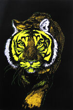 TIGER BLACK LIGHT 23x35 poster COLORFUL BEAUTIFUL ENDANGERED MYSTERIOUS BIG CAT!