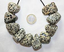 Dálmata Jaspe / dalmatinerstein / Aplit piedra en tambor colgante perforado