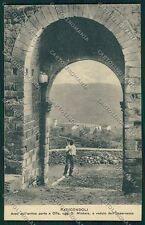 Siena Radicondoli cartolina QK4788