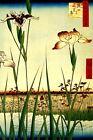 Horikiri Iris Garden Flowers Japanese Views Edo By Hiroshige Art Repro FREE S/H