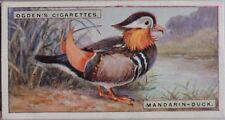 Single No.13 MANDARIN DUCK - FOREIGN BIRDS - Ogdens Ltd 1924