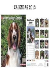 WELSH SPRINGER SPANIEL DOGS CALENDAR 2013 + FREE WELSH SPRINGER SPANIEL FRIDGE