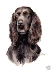 Field Spaniel Dog Painting Art 11 X 14 Large Signed Djr