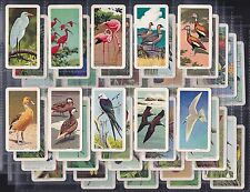 "BROOKE BOND CANADA, TROPICAL BIRDS, SET OF 48 (1964) ""EXCELLENT CONDITION"""