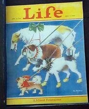 4 Dog Breeds Cover Life Reprint 1928 Will Rannells Bulldog Fox Terrier Borzoi