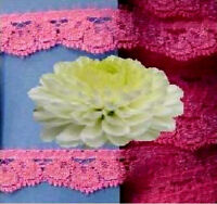 "Hot Pink Lace Trim 12 - 24 Yds x 1/2"" Scalloped E10V Buy any 3 Trims Get 1-FREE"