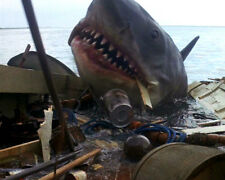 JAWS SHARK ATTACKING BOAT 8X10 PHOTO