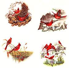 Ceramic Decals Seasons Cardinal Bird Spring Summer Autumn Winter Set
