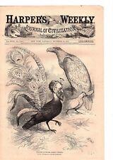 Nast, Political Cartoon, The jackdaw conkling new york  1879 Antique Print (g12